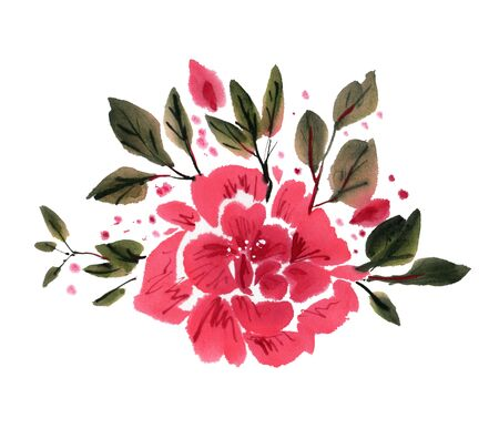 gently: Red watercolor flowers isolated on a white background. Hand-drawn illustration.