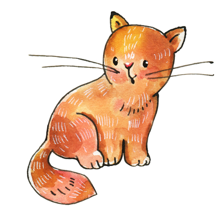 Watercolor drawing of a red cat isolated on a white background. Hand-drawn illustration.