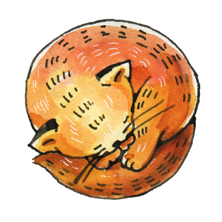 Watercolor drawing of a sleeping red cat isolated on a white background. Hand-drawn illustration.