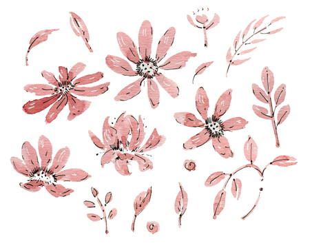 gently: Watercolor flowers isolated on a white background. Hand-drawn illustration.