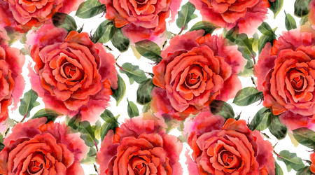 Seamless pattern with red  watercolor roses on white background. Hand-drawn illustration. Stock Photo