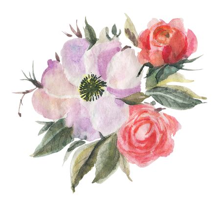 Bouquet of flowers . Watercolor drawing.  Hand-drawn illustration.