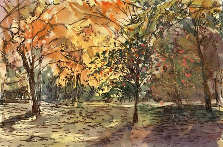 Autumn landscape.  Watercolor drawing. Hand-drawn illustration.