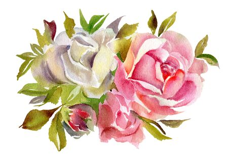 Red watercolor  roses  isolated on a white background. Hand-drawn illustration.