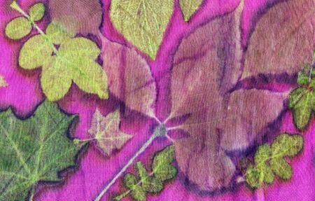 Botanical print with leaf prints on natural silk. Hand-drawn illustration. Reklamní fotografie