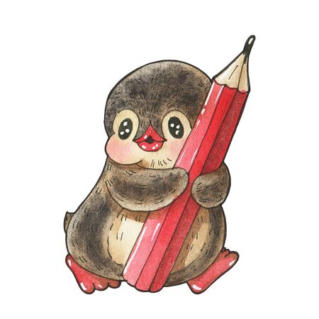 Winter illustration.  Funny cartoon penguin with a pencil, isolated on a white background. Drawing in watercolor and ink.
