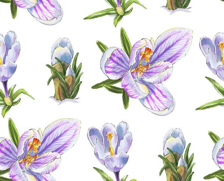 Seamless pattern with Spring  flowers. Crocuses.  Drawing with markers.  Hand-drawn illustration. Imagens - 138297562