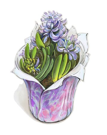 Spring flowers. Hyacinths in a pot, isolated on a white background. Drawing with markers.
