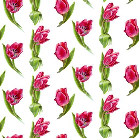 Seamless pattern with  flowers. Red tulips.  Drawing with markers.  Hand-drawn illustration.