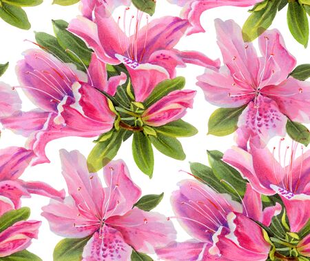 Seamless pattern with watercolor flowers. Rhododendrons.  Hand-drawn illustration.