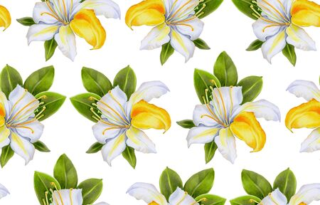 Seamless pattern with watercolor flowers. White rhododendrons.  Hand-drawn illustration.