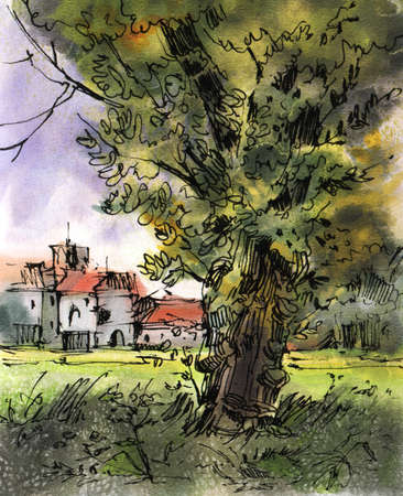 Summer landscape with an old tree and a village. Drawing in ink and watercolor.