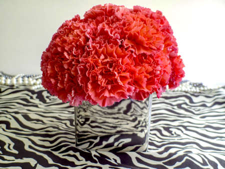 Pink Carnations in a silver vase on animal print background with pearls