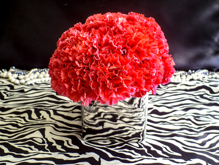 Pink Carnations in a silver vase on animal print and black background with pearls Banco de Imagens