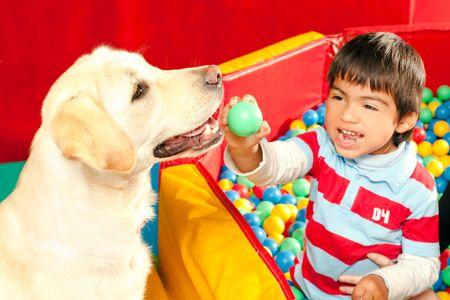 terapias alternativas: Paciente sido tratadas con la ayuda de un perro entrenado  Foto de archivo
