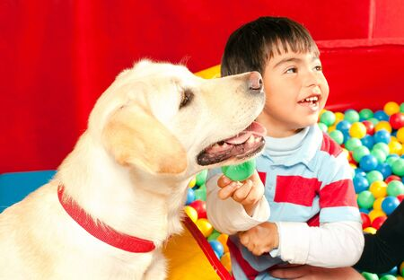 trained: Patient been treated with the assistance of a trained dog