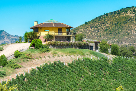 オイギンス州地域、サンタ ・ クルス チリ - 2016 年 12 月 20 日: コルチャグア バレー、「ワインのルート」では、ワイン周辺新興観光地のサンタクル 報道画像