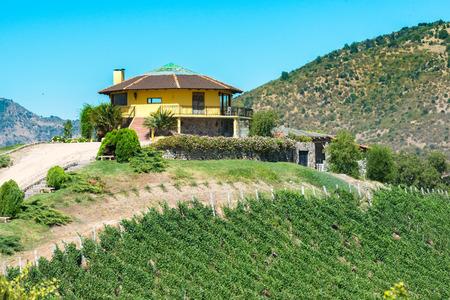 Santa Cruz, OHiggins Region, Chile - December 20, 2016: A view of Santa Cruz vineyard in the Colchagua Valley, an emerging tourist attraction around wine in the wine route. Editöryel