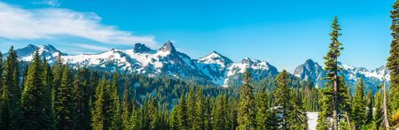Paradise area at Mount Rainier National Park, Washington State, USA Stock Photo