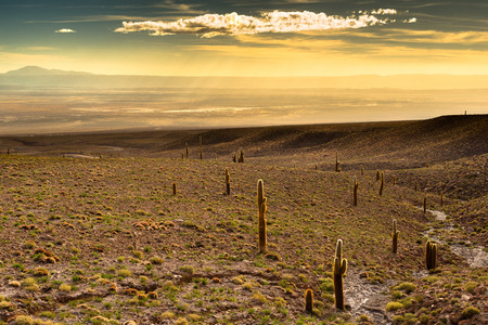 View of the Atacama Salt Lake (Salar de Atacama) at sunset, Atacama desert, Chile