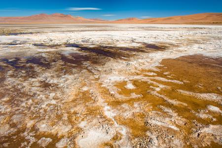 Salt crust at the shore of  Salar del Quisquiro, spanish for Quisquiro Salt Lake in the Altiplano at an altitude of 4150m, Atacama desert, Antofagasta Region, Chile, South America Stock Photo