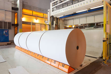 Big rolls of paper coming out of the machinery in a paper mill plant.