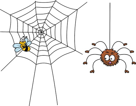fly cartoon: Spider and prey