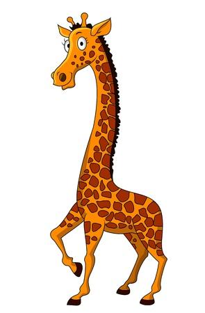white background giraffe: Giraffe cartoon