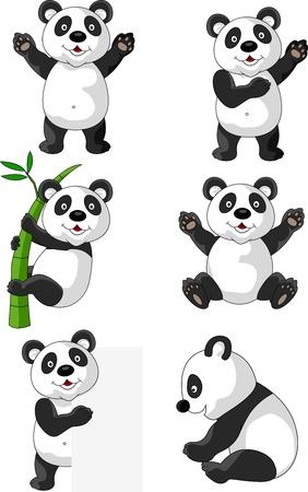 oso panda: Panda dibujos animados Vectores