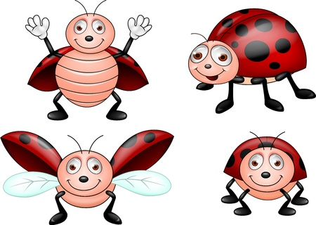 mariquita cartoon: Ladybug conjunto de dibujos animados