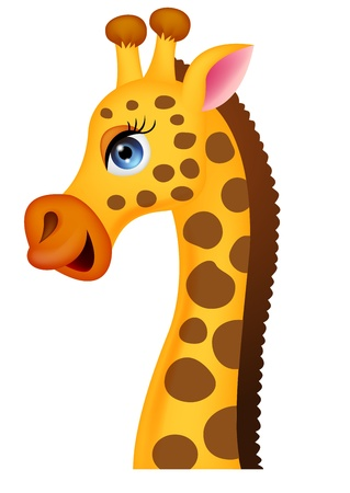 white background giraffe: Giraffe head cartoon