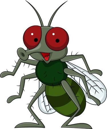 mosca caricatura: Fly dibujos animados