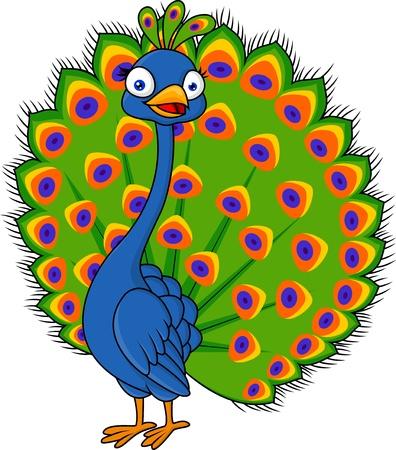 plumas de pavo real: Pavo real lindo de dibujos animados