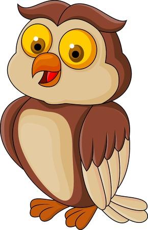 oiseau dessin: Dr�le de bande dessin�e de hibou Illustration