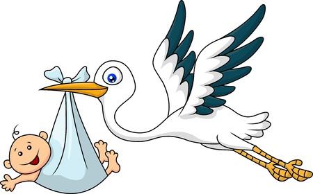cigogne: Cigogne avec bébé