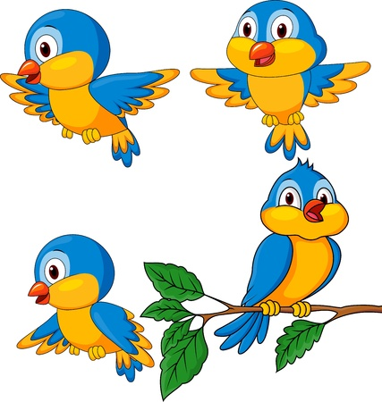 Bird cartoon  Vector
