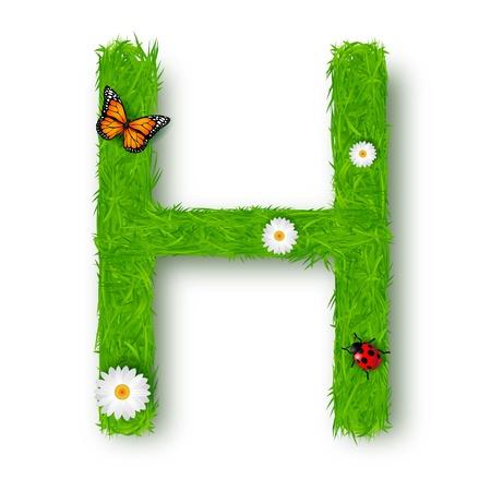 Grass Letter H on white background Illustration