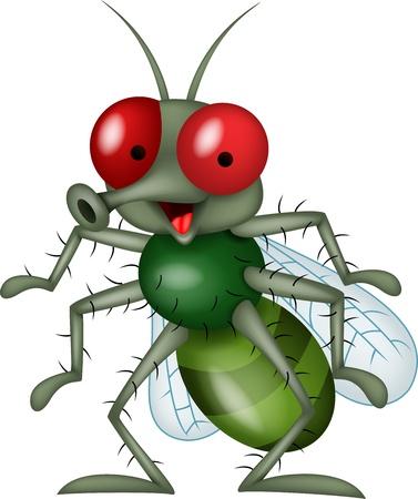 mosca caricatura: Sonriente caricatura mosca