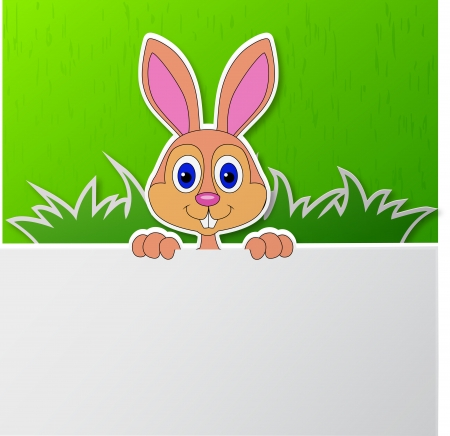 Rabbit with blank sign  Stock Vector - 18586431