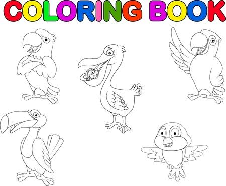 guacamaya caricatura: Colecci�n del p�jaro de libro para colorear Vectores
