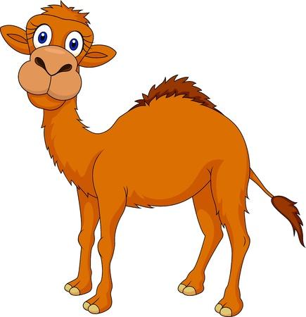 kamel: Nette camel cartoon