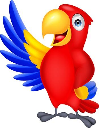 pappagallo: Ara offerta cartone agitando Vettoriali