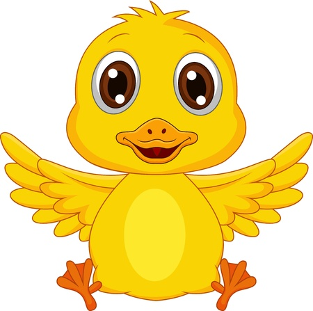 duck: Cute baby duck cartoon Illustration