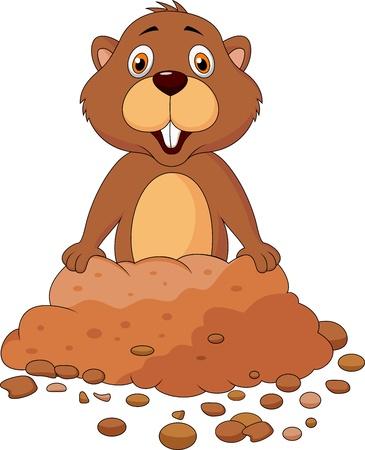 castor: Linda marmota de dibujos animados