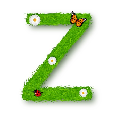 Grass letter Z on white background photo