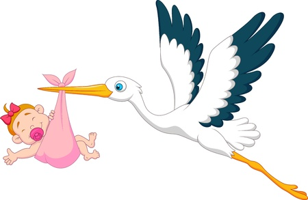 stork delivering a baby: Stork with baby girl cartoon