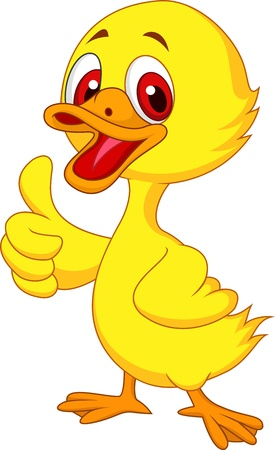 animal: Cute baby duck cartoon thumb up