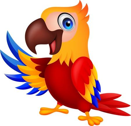 amerika papağanı: Sevimli Amerika papağanı kuş karikatür Waving Çizim