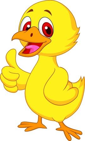 pollo caricatura: Pollo lindo del bebé con el pulgar arriba