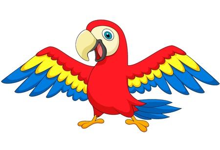 cartoon parrot: Cute parrot bird cartoon